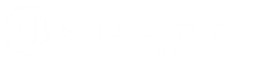 Sanne Beijerman Coaching Online